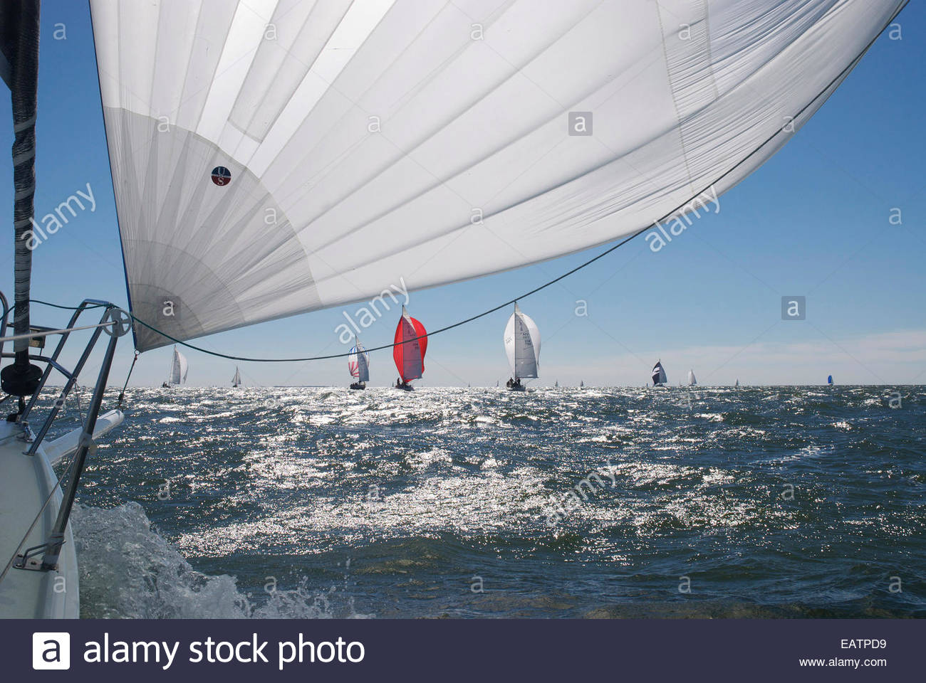 A spinnaker flying on a breezy day during a regatta. - Stock Image