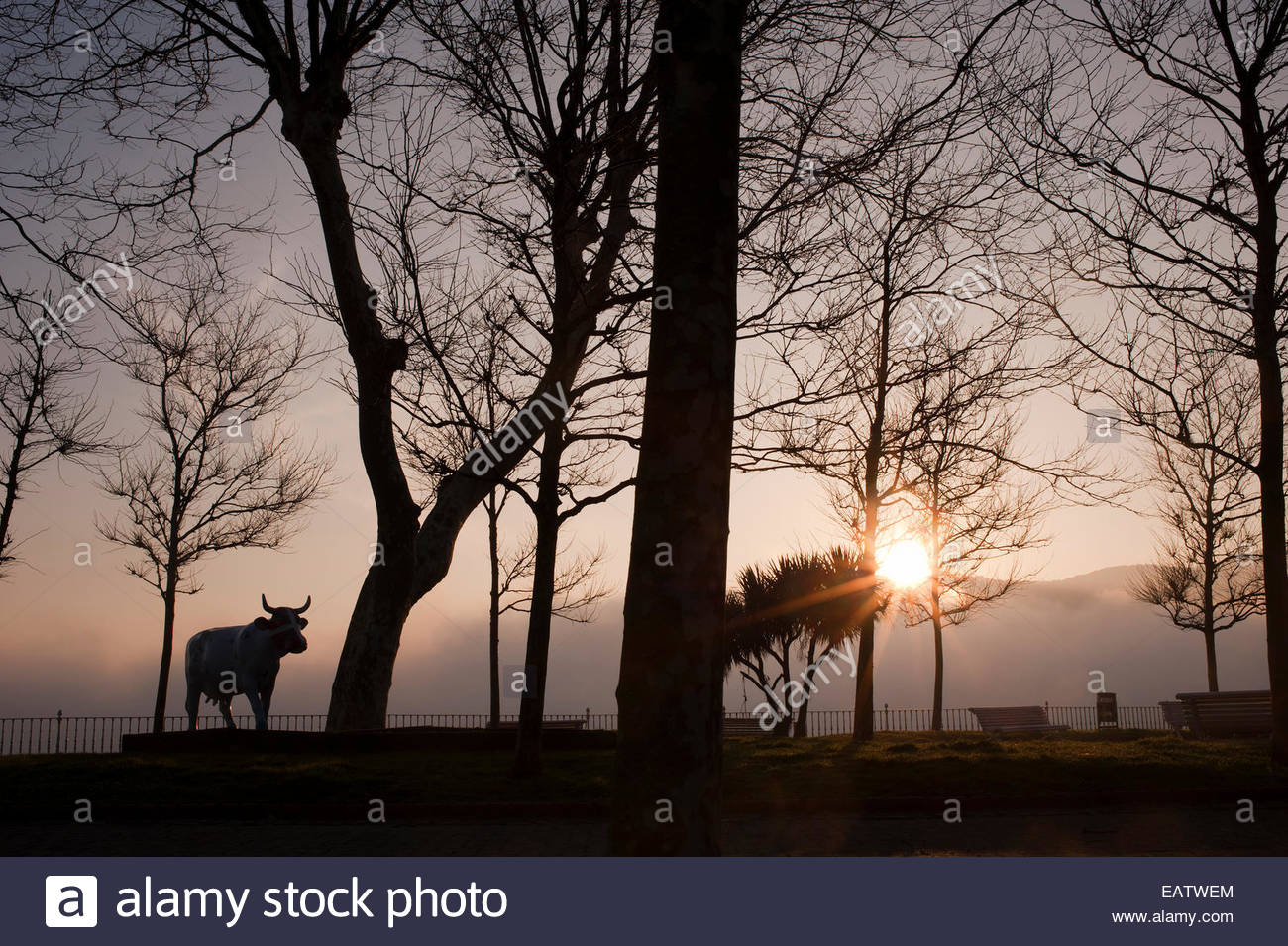 A statue of a bull at sunrise. - Stock Image