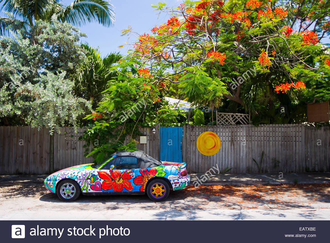 A colorful painted car with flowers is parked on the side walk next to a tree with colorful flowers in Key West, - Stock Image
