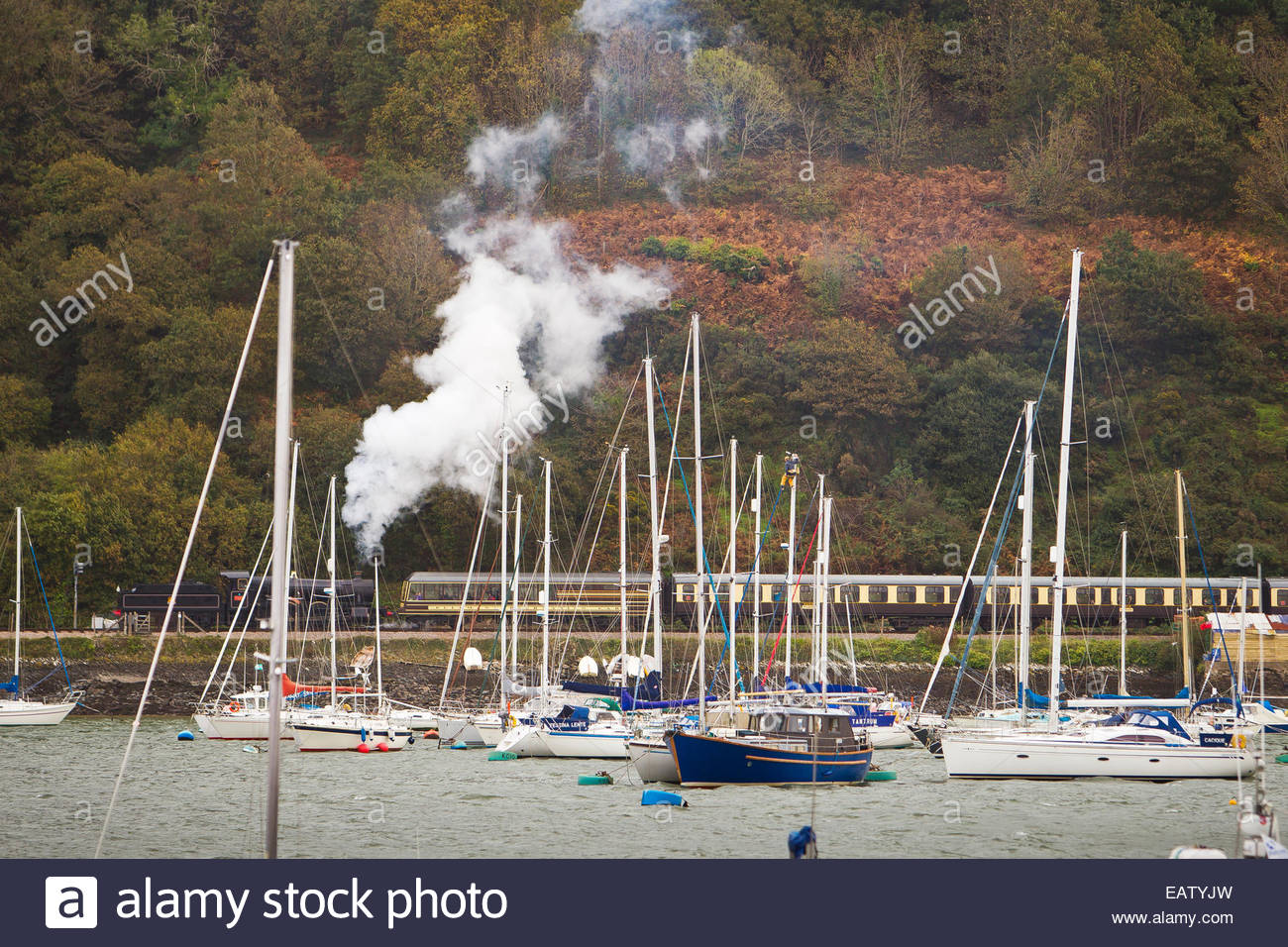 A train spewing steam travels along the coast of Dartmouth, England. - Stock Image