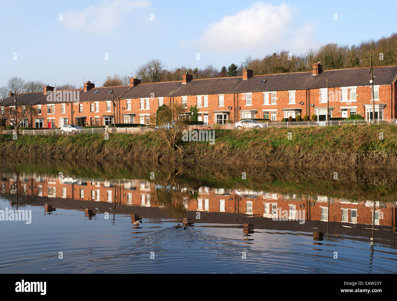 South View, a row of terraced houses reflected in river Wear, Fatfield, north east England, UK - Stock Image