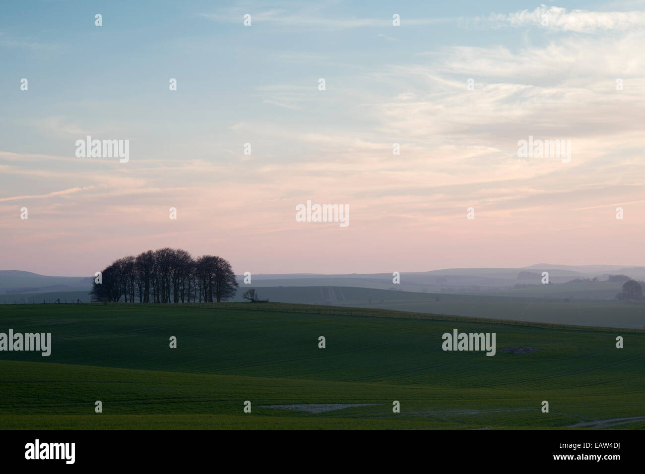 Early spring evening in the Wiltshire countryside, Avebury, UK Stock Photo