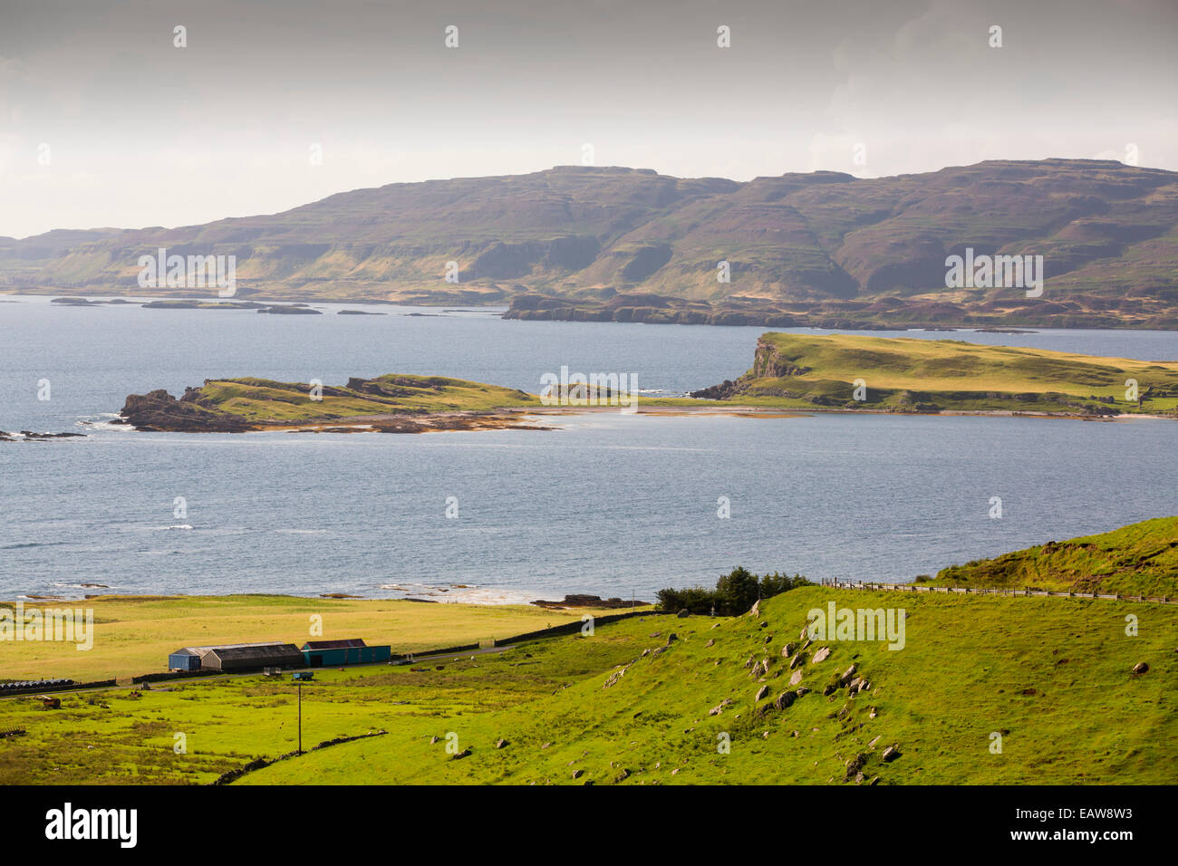 The island of Inch Kenneth in Loch Na Keal, Mull, Scotland, UK. Stock Photo