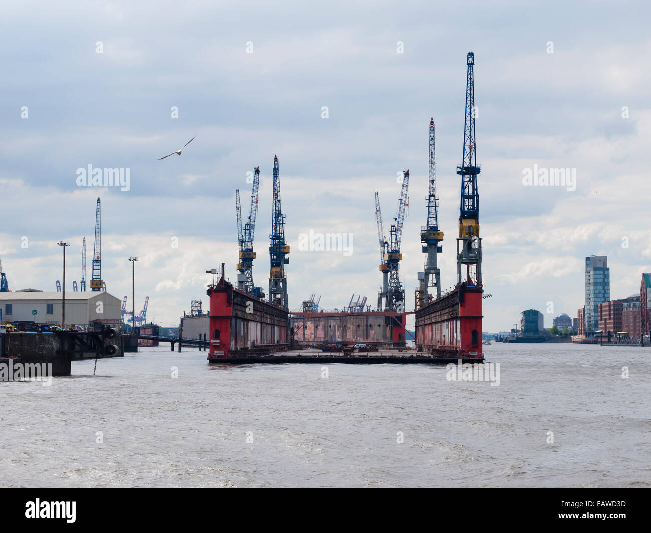 An empty dry dock of German shipbuilder 'Blohm+Voss' is floating on the Elbe river at Hamburg harbor. - Stock Image