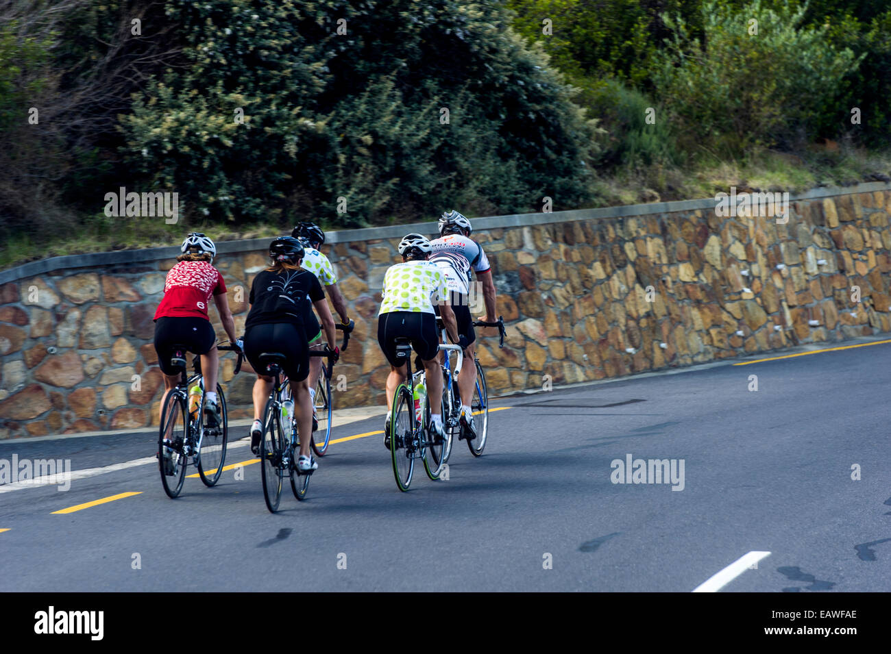 Cyclists speed down a winding coastal road on their racing bikes. - Stock Image