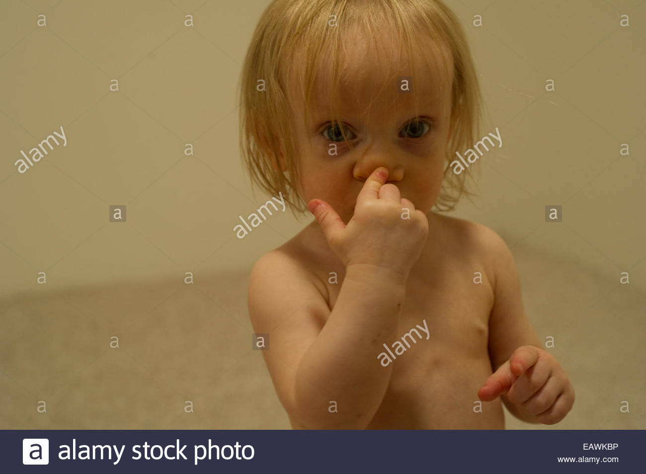 17 Month Old Stock Photos & 17 Month Old Stock Images - Alamy