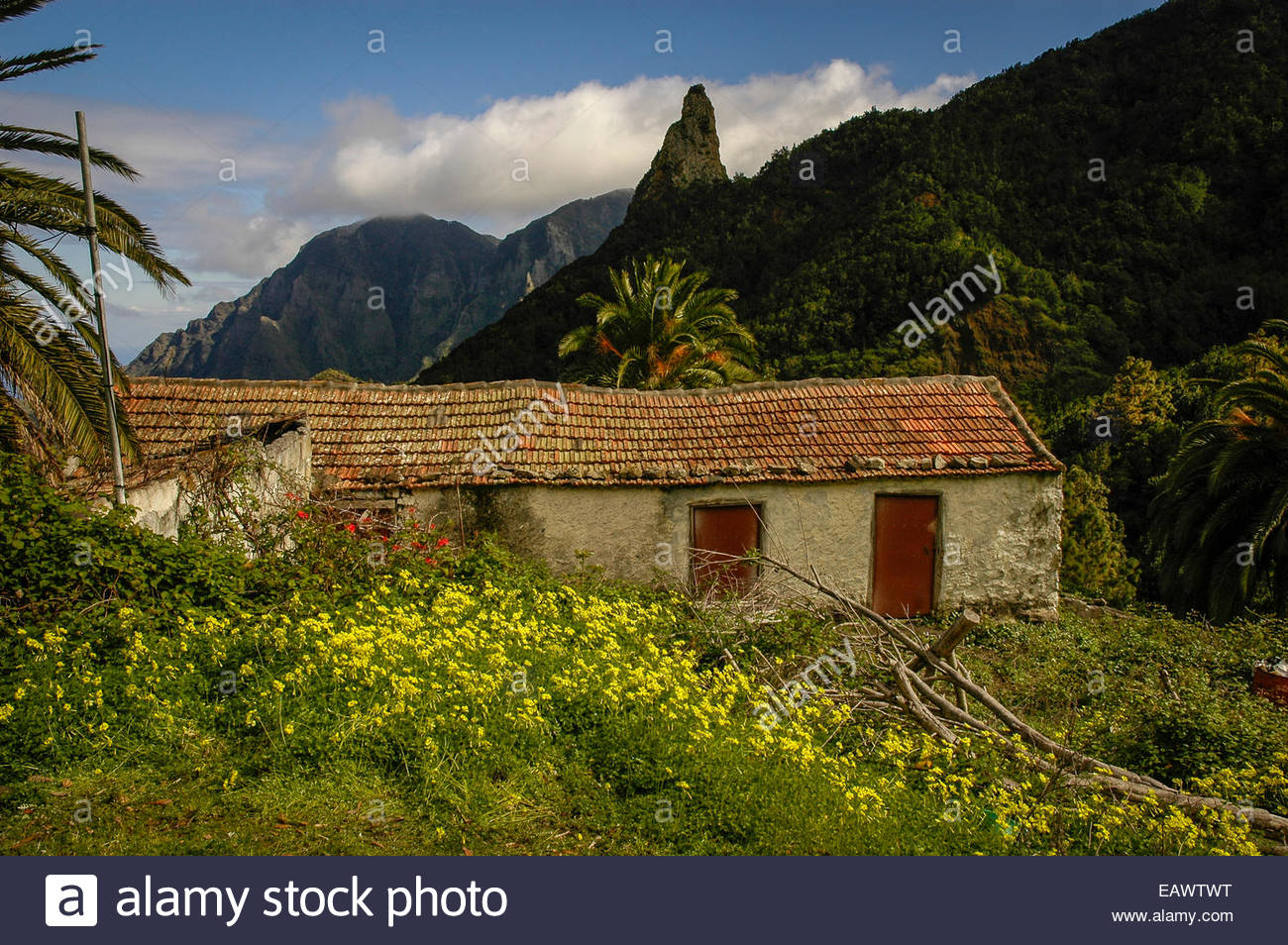 An old house and gardens on a rugged landscape near a volcanic plug ...