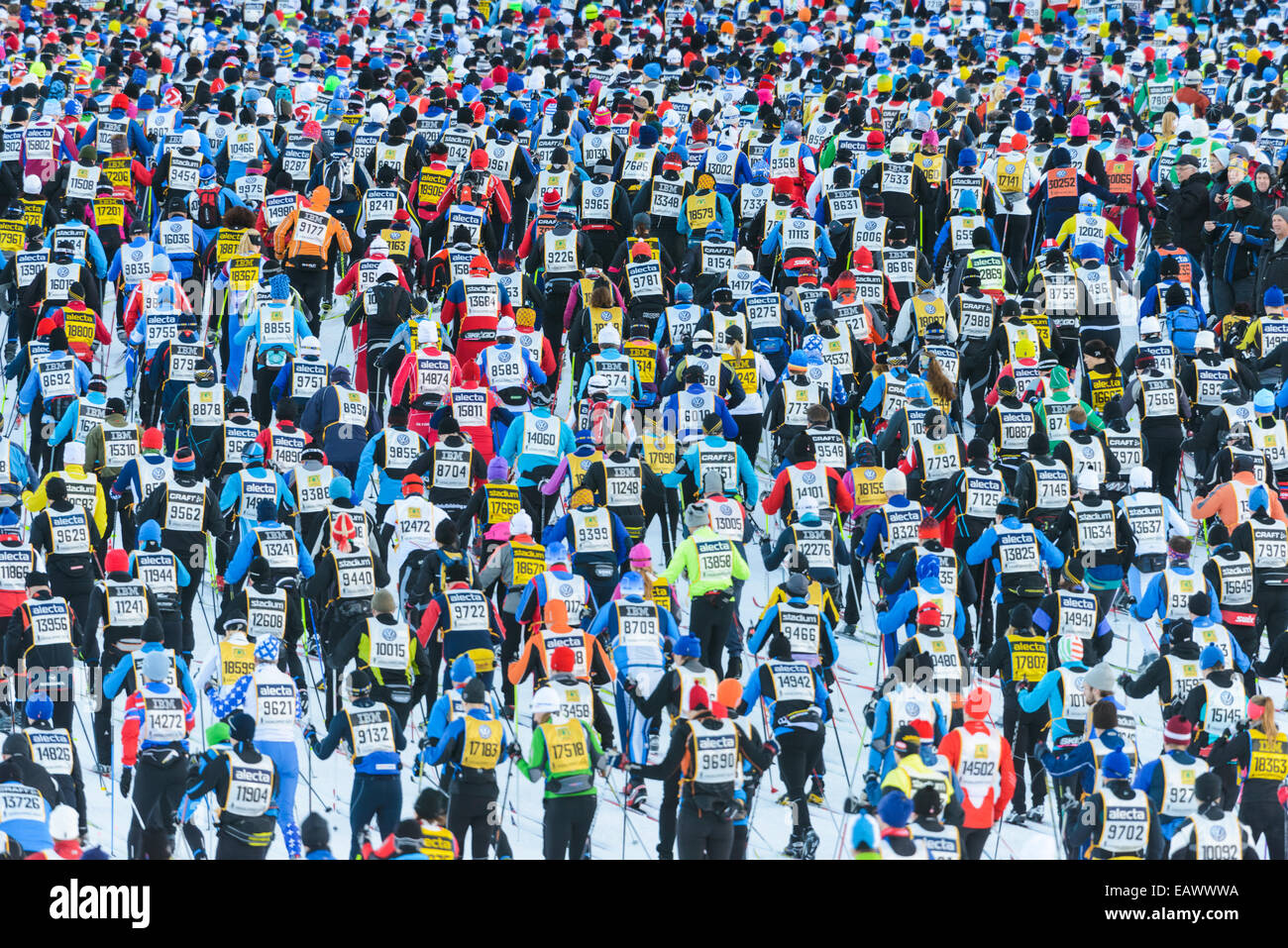 Crowd of cross-country skiers at Vasaloppet race - Stock Image
