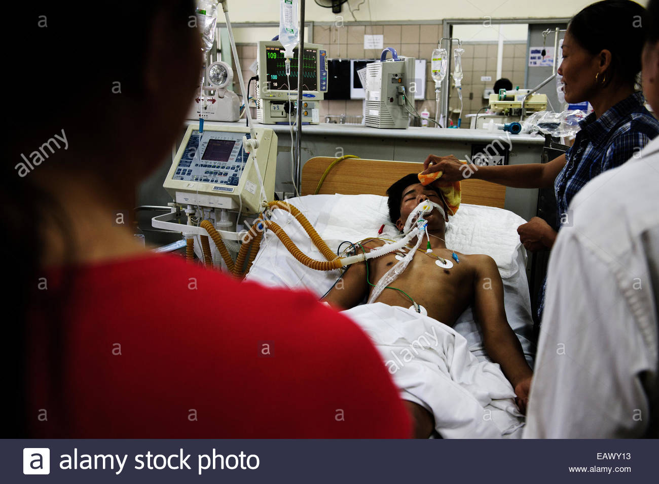 Bitten by a venomous krait as he slept in his home, a young man lies paralyzed in the hospital. - Stock Image