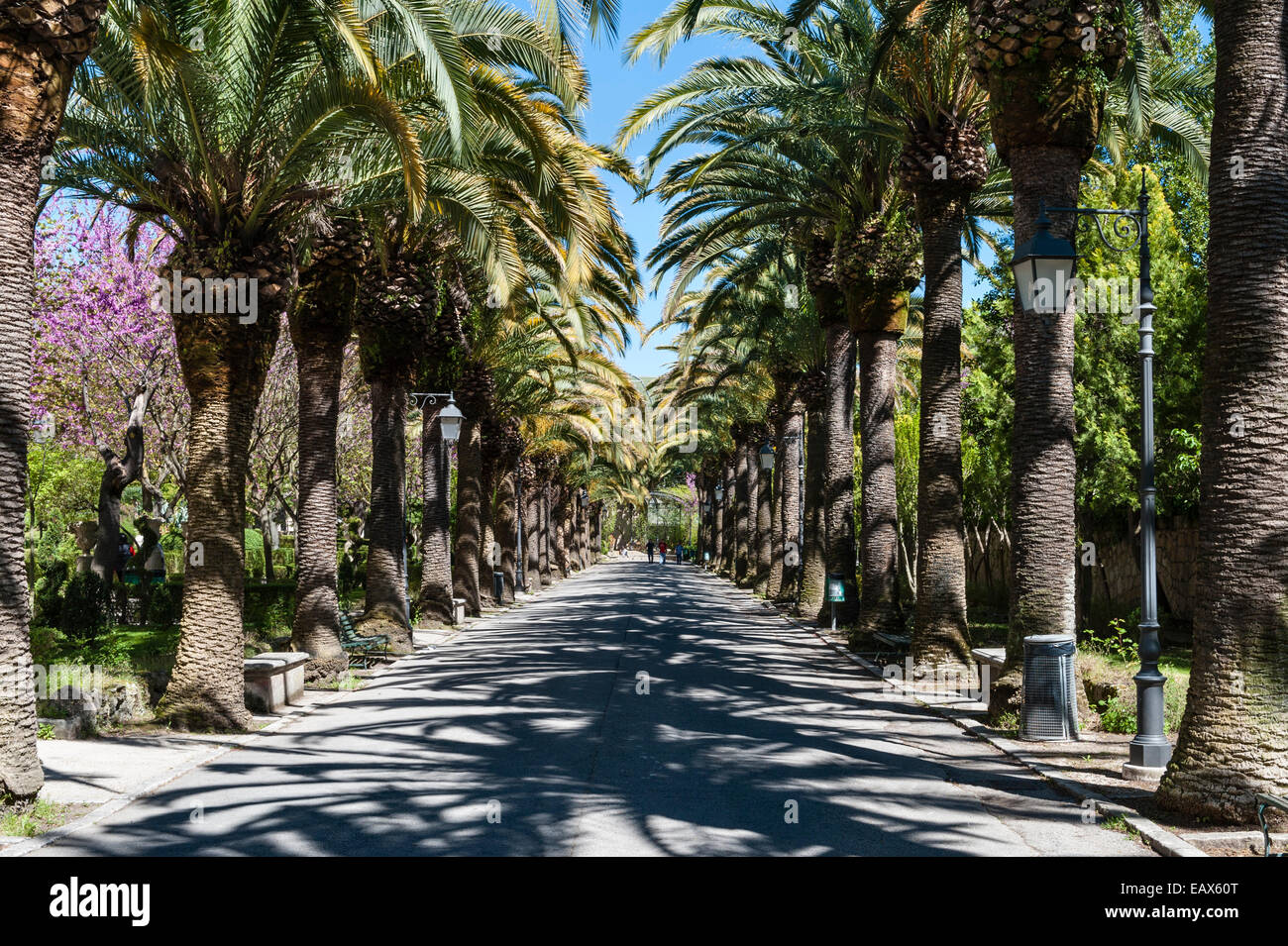 Ragusa, Sicily, Italy. The Giardino Ibleo is the name given to the oldest public gardens in the town - Stock Image