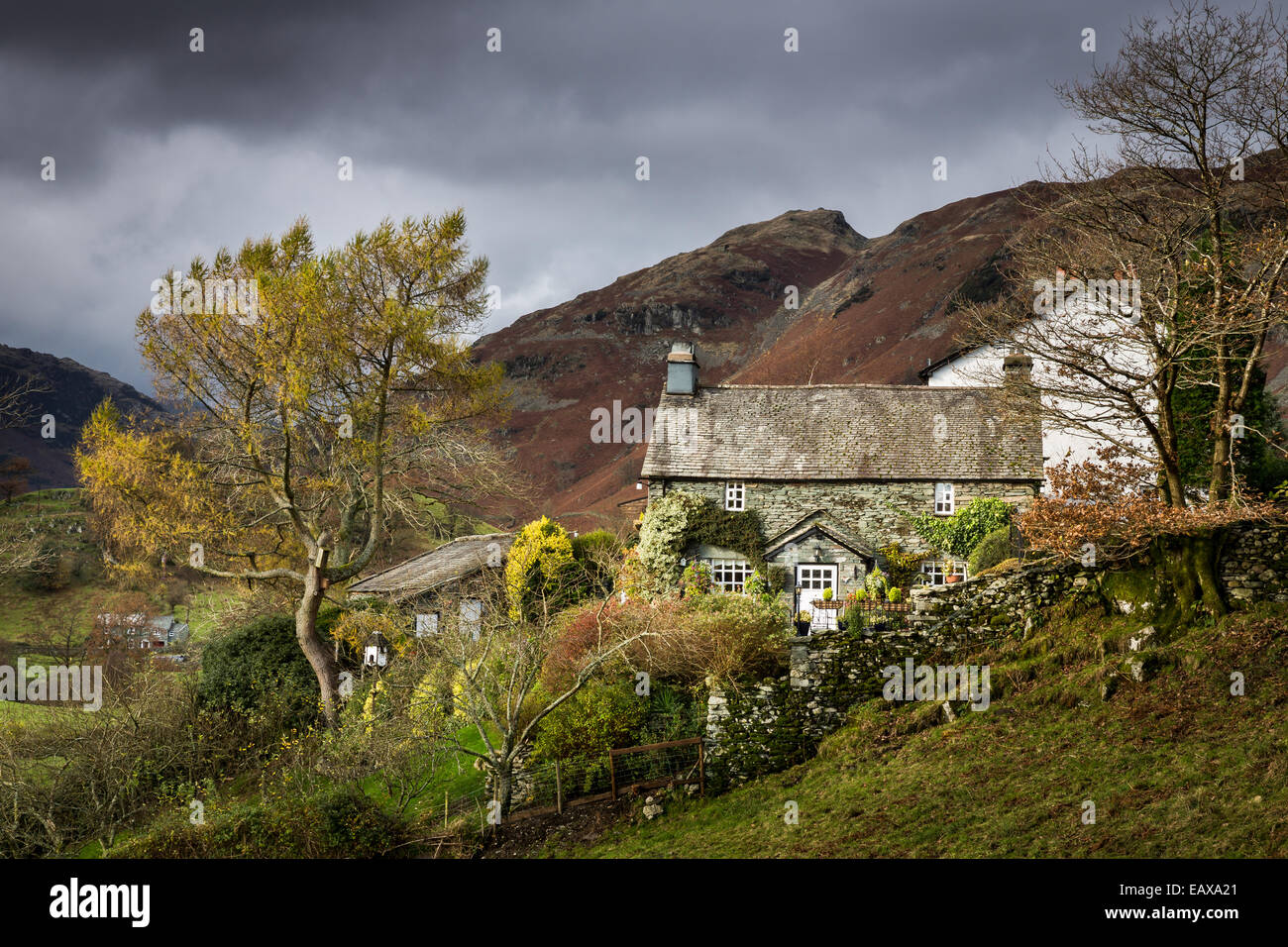 A lakeland Cottage illuminated by a short spell of sunlight in the Langdale fells in the Lake District National - Stock Image