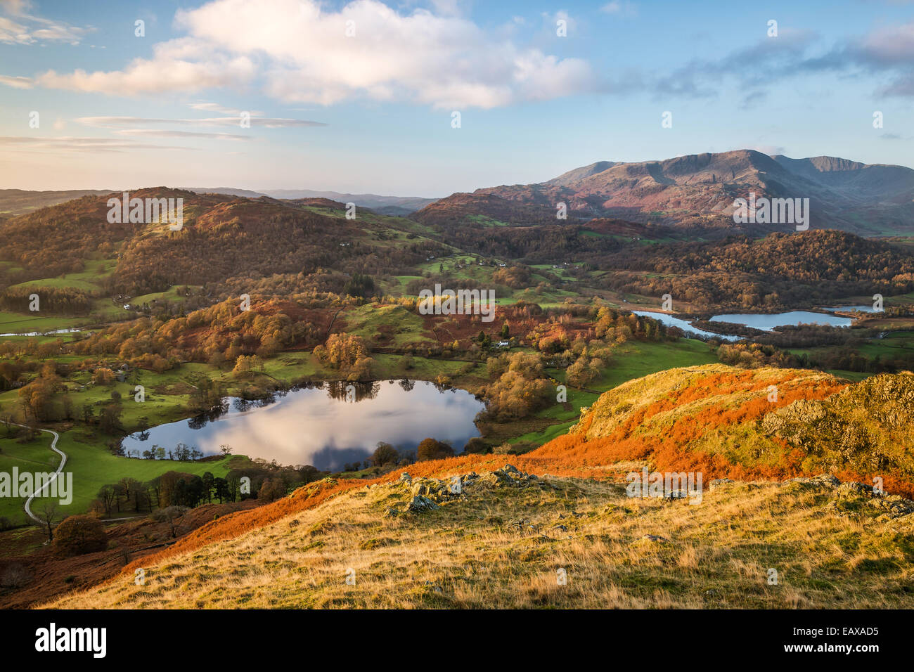View across Loughrigg Tarn at sunrise from the summit of Loughrigg Fell, looking across Elter Water towards the - Stock Image