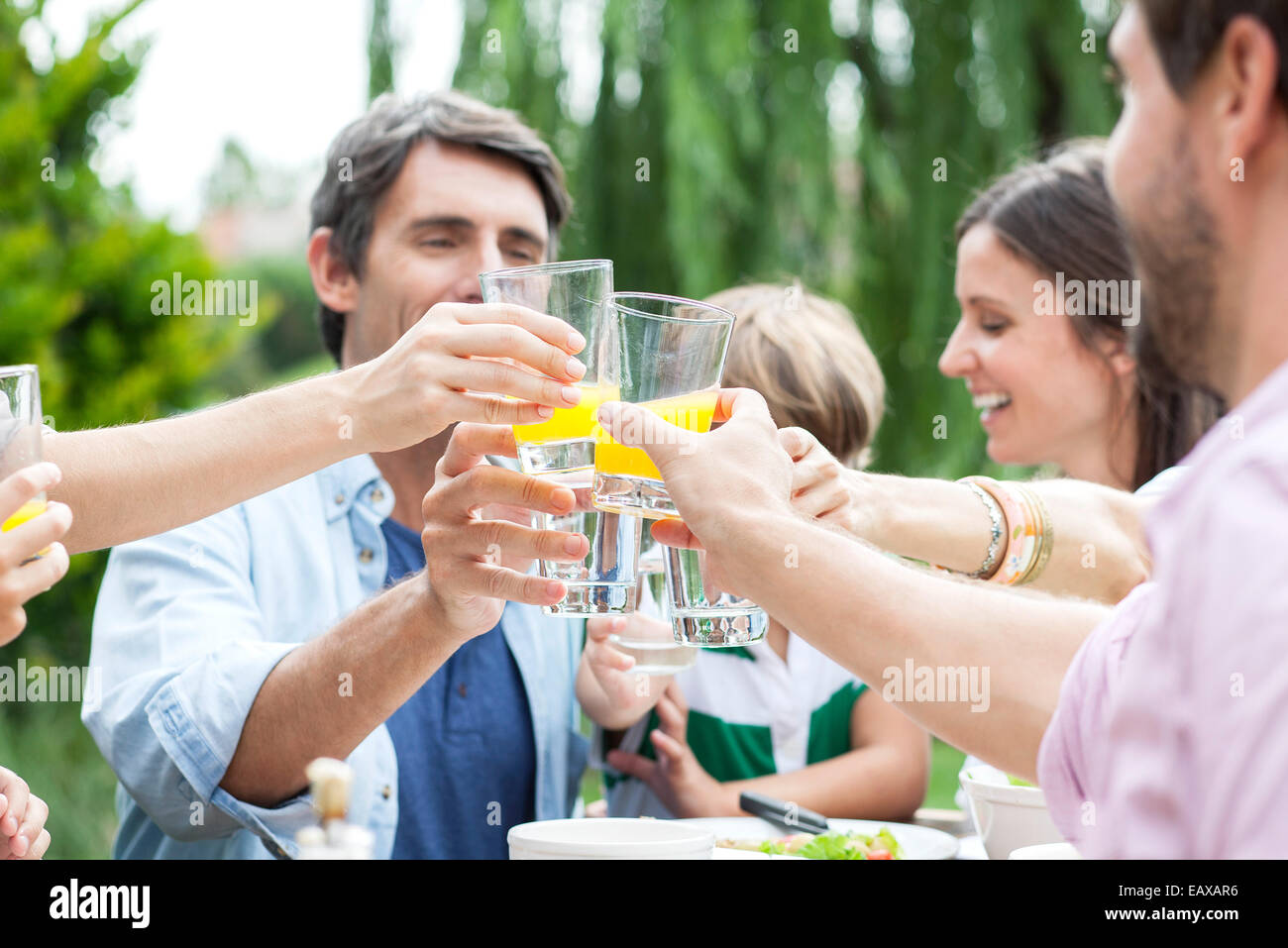 Family clinking glasses at outdoor gathering - Stock Image