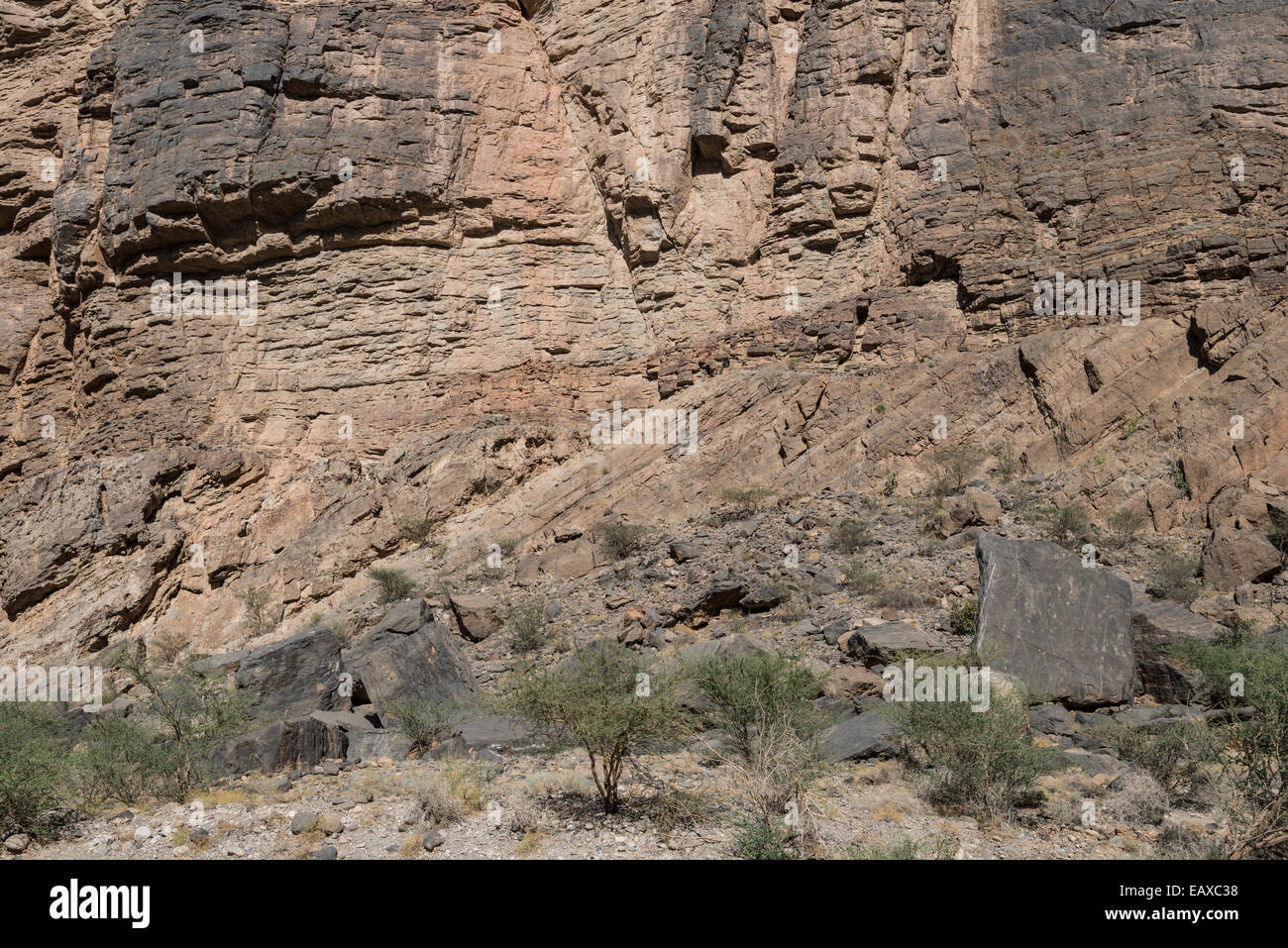 An angular unconformity between two stratigraphic units. Oman. - Stock Image