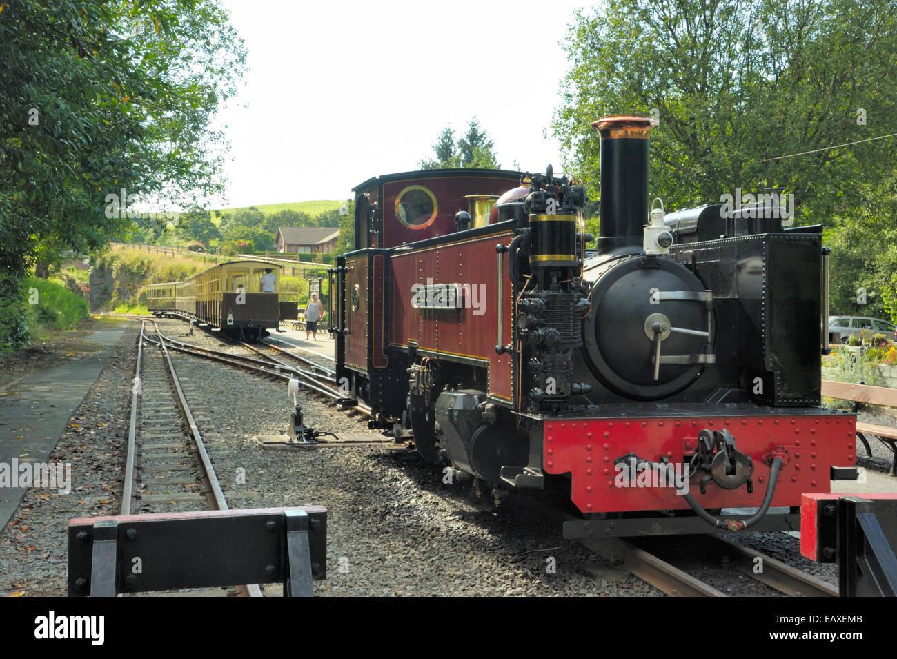 Steam Locomotive 'Prince of Wales' at Devil's Bridge station - Stock Image