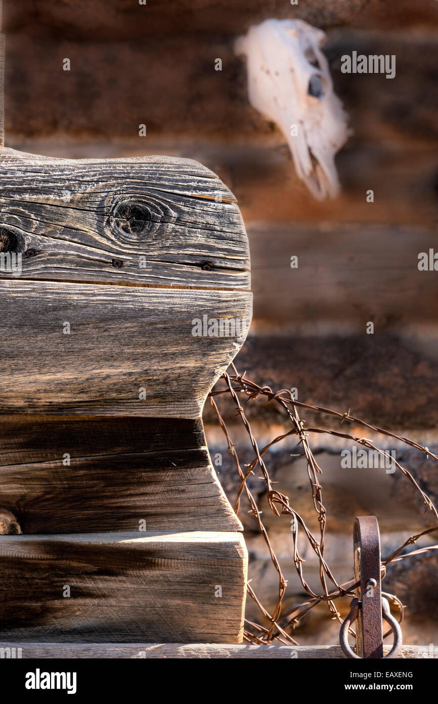 A vertical Old West editorial style image of a buck board , barbed wire and a cow skull. - Stock Image