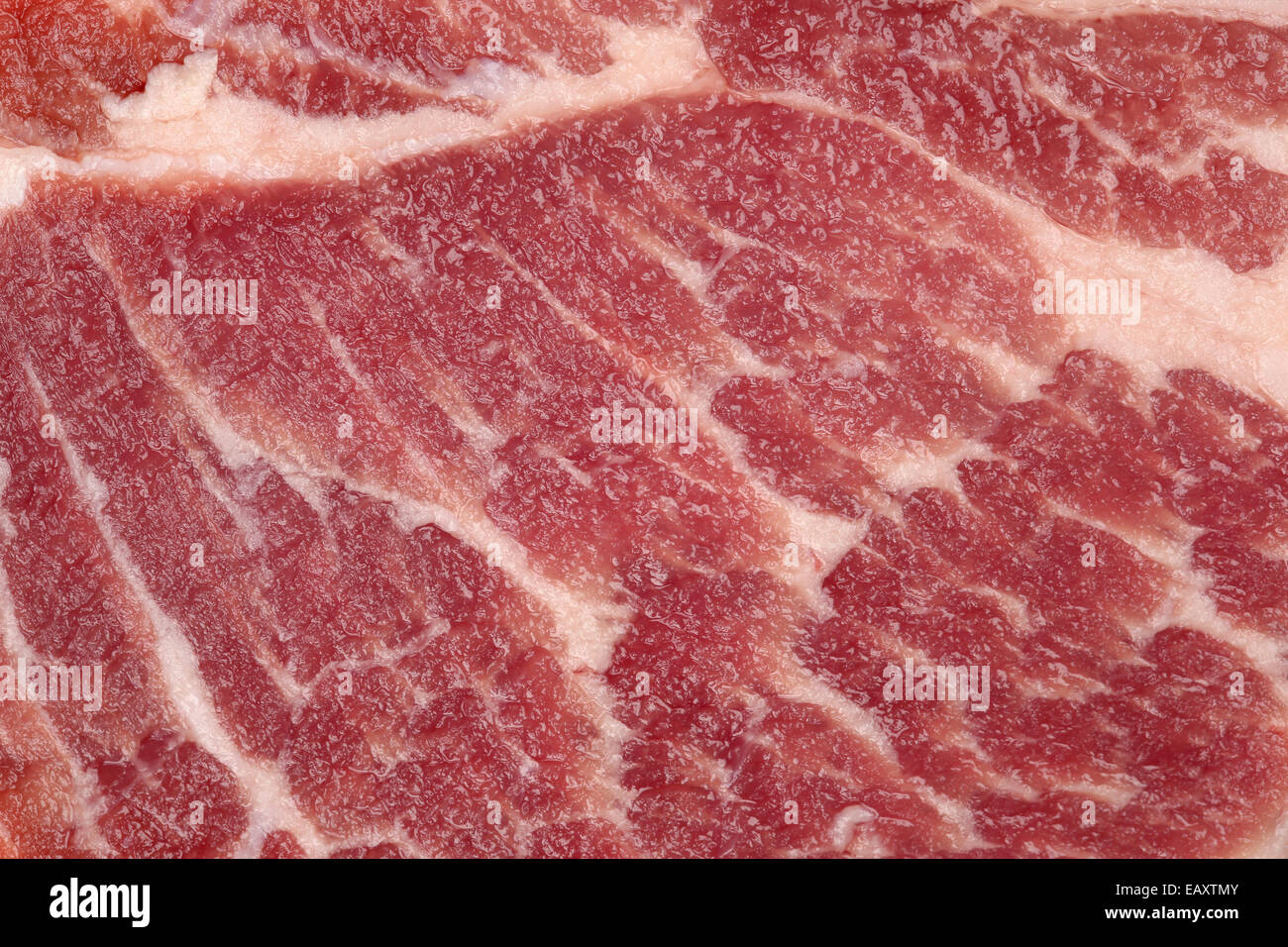 Raw pork meat cutlet steak background and texture - Stock Image