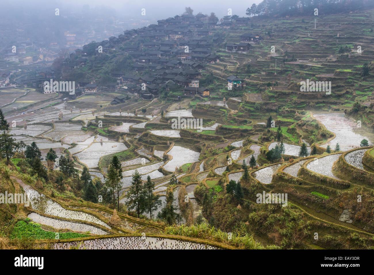 Rice terraces of XiJiang, Guizhou Province, China - Stock Image