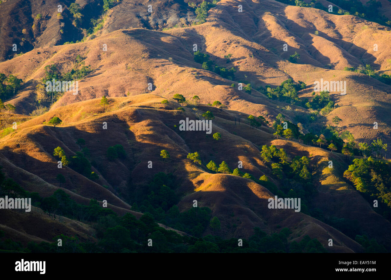The Cordillera, North Luzon, Philippines - Stock Image