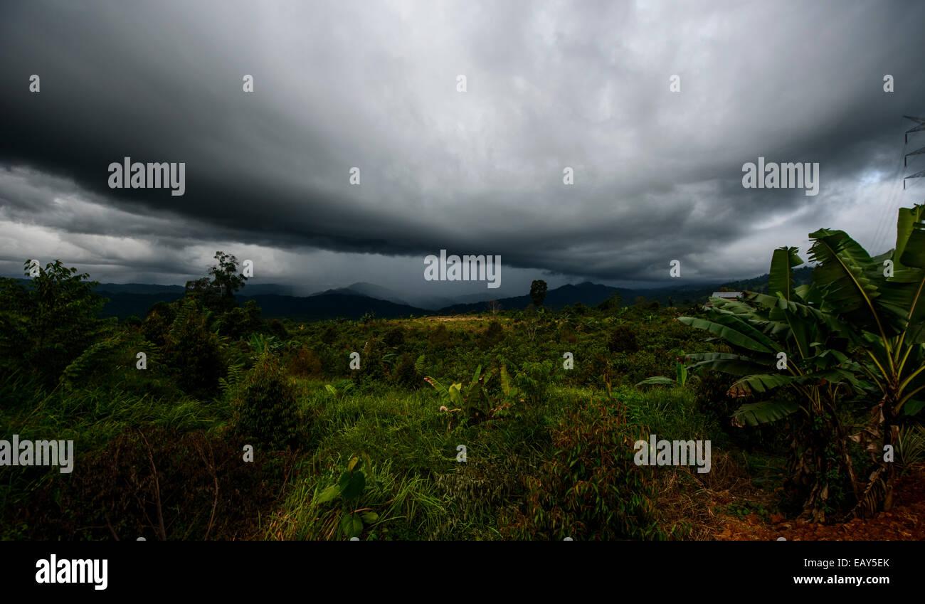 Sulawesi, Indonesia - Stock Image