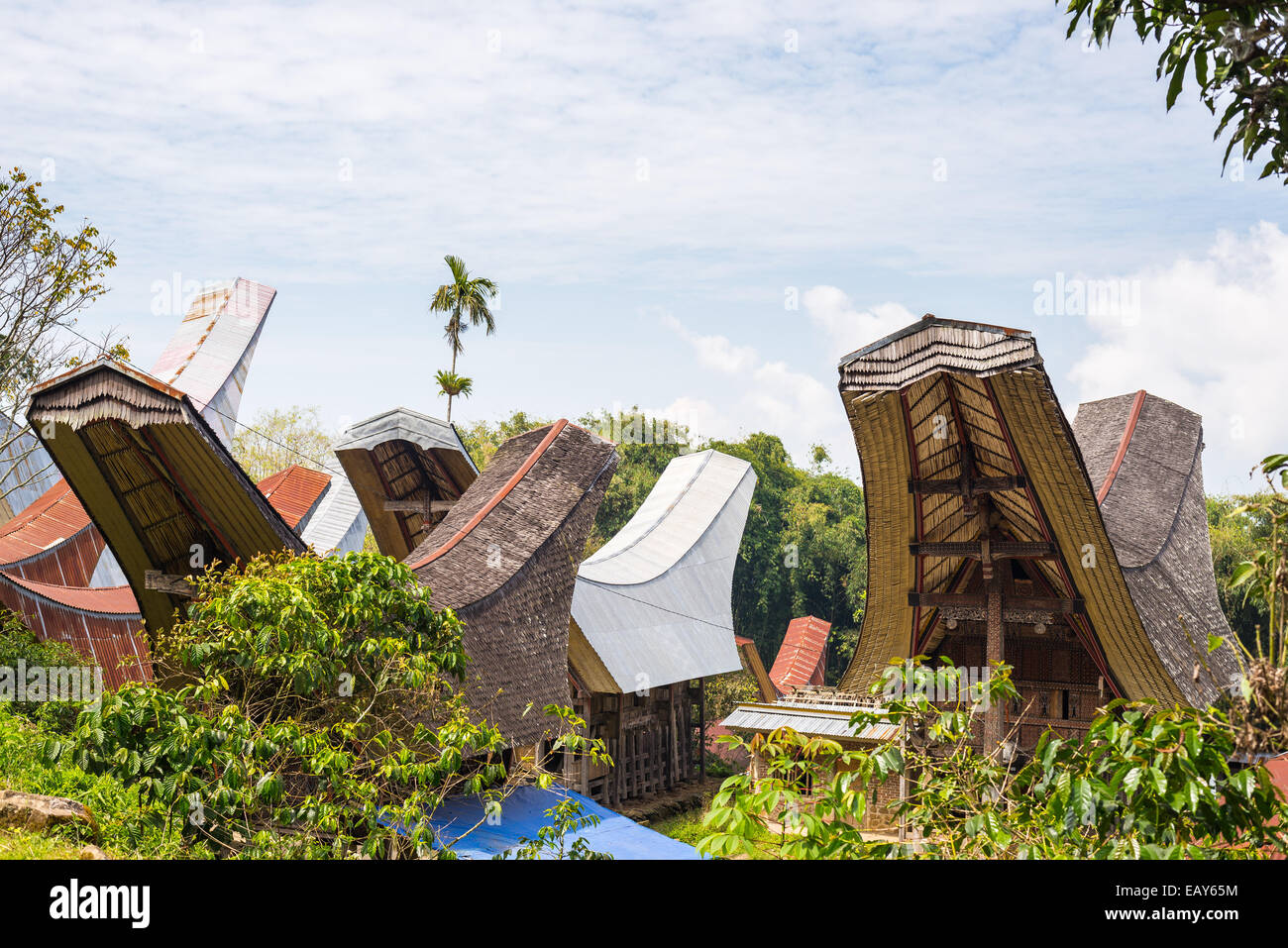Traditional village of residential buildings with decorated facade and boat shaped roofs. Tana Toraja, South Sulawesi, Stock Photo