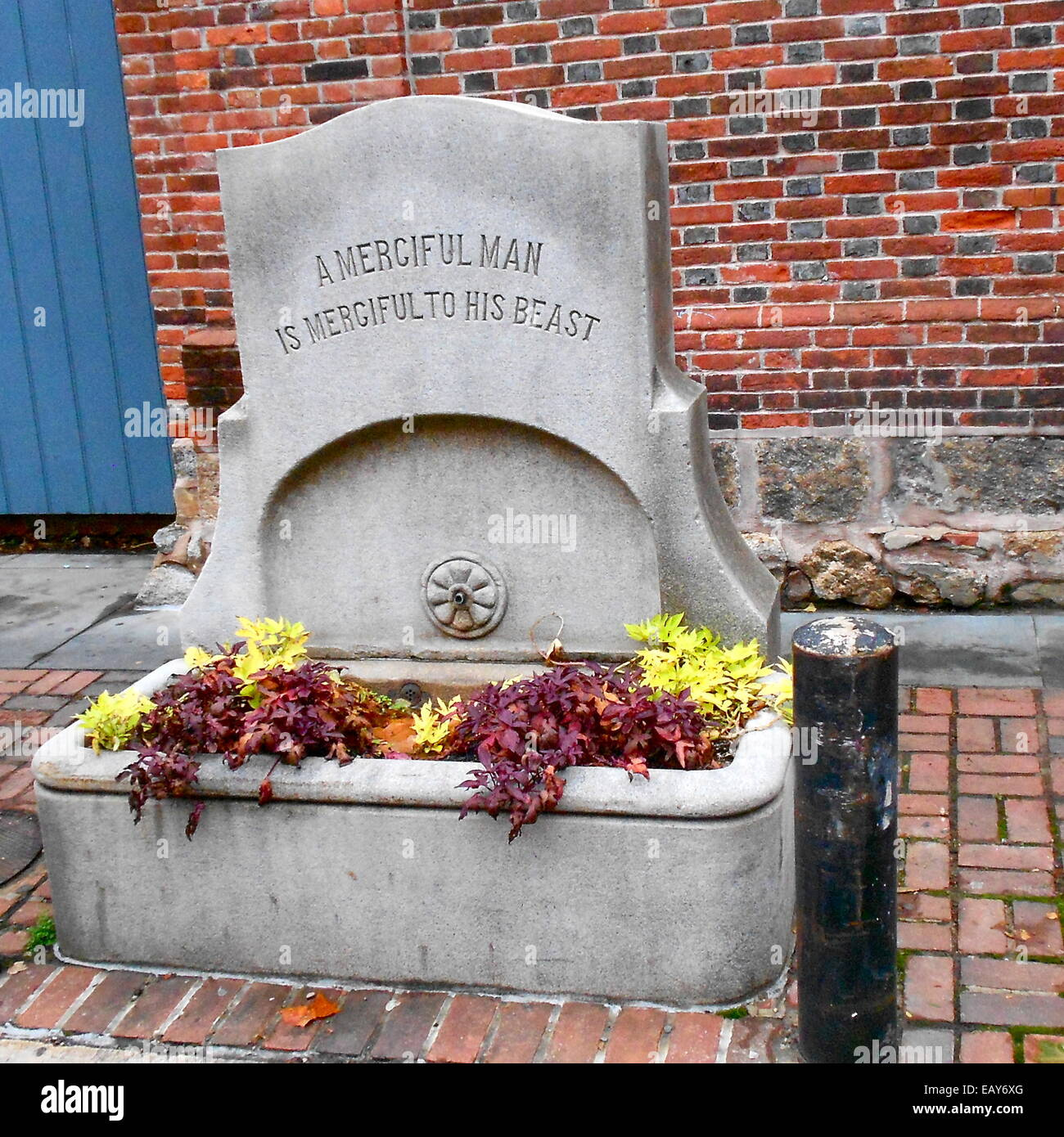 Water trough on 9th Street in Philadelphia, near Pennsylvania Hospital - Stock Image