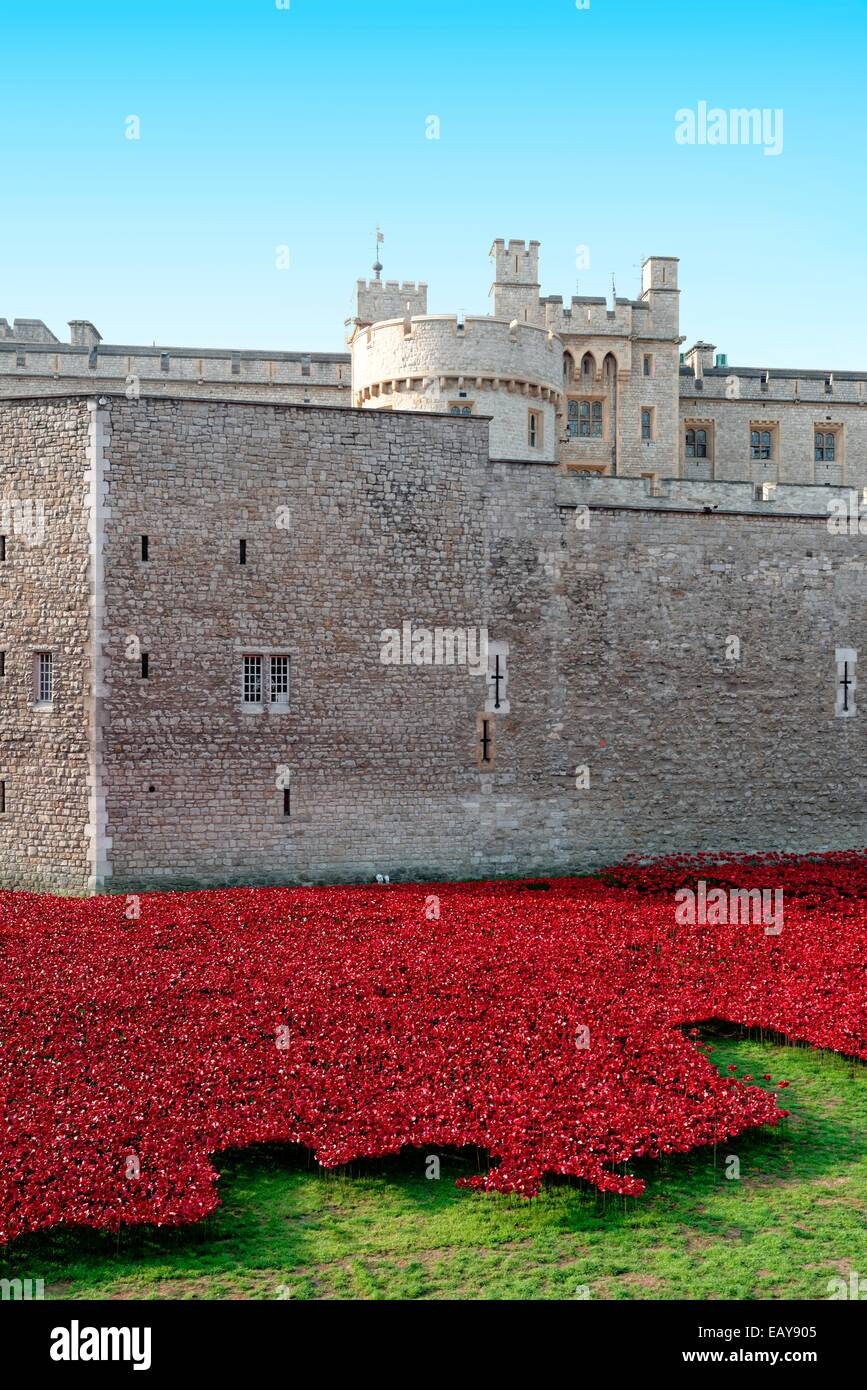 Ceramic red poppies at the Tower Of London, commemorating World War ONe soldiers who fell Stock Photo