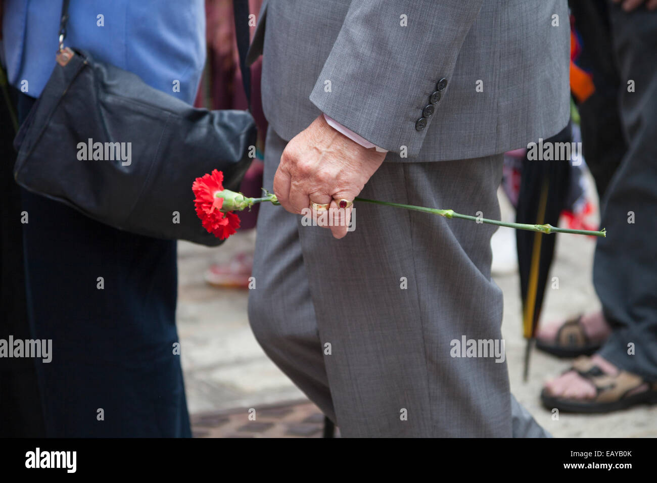 A man carries a single red carnation - Stock Image