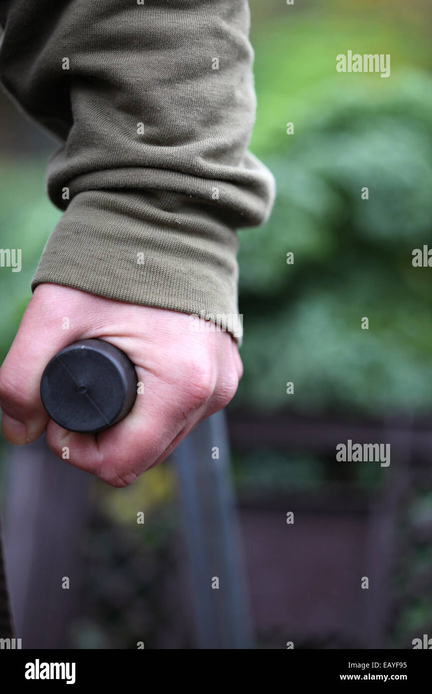 Close-up of a hand carrying the handhold of a wheelbarrow with harvested curly kale in an urban gardening project, - Stock Image
