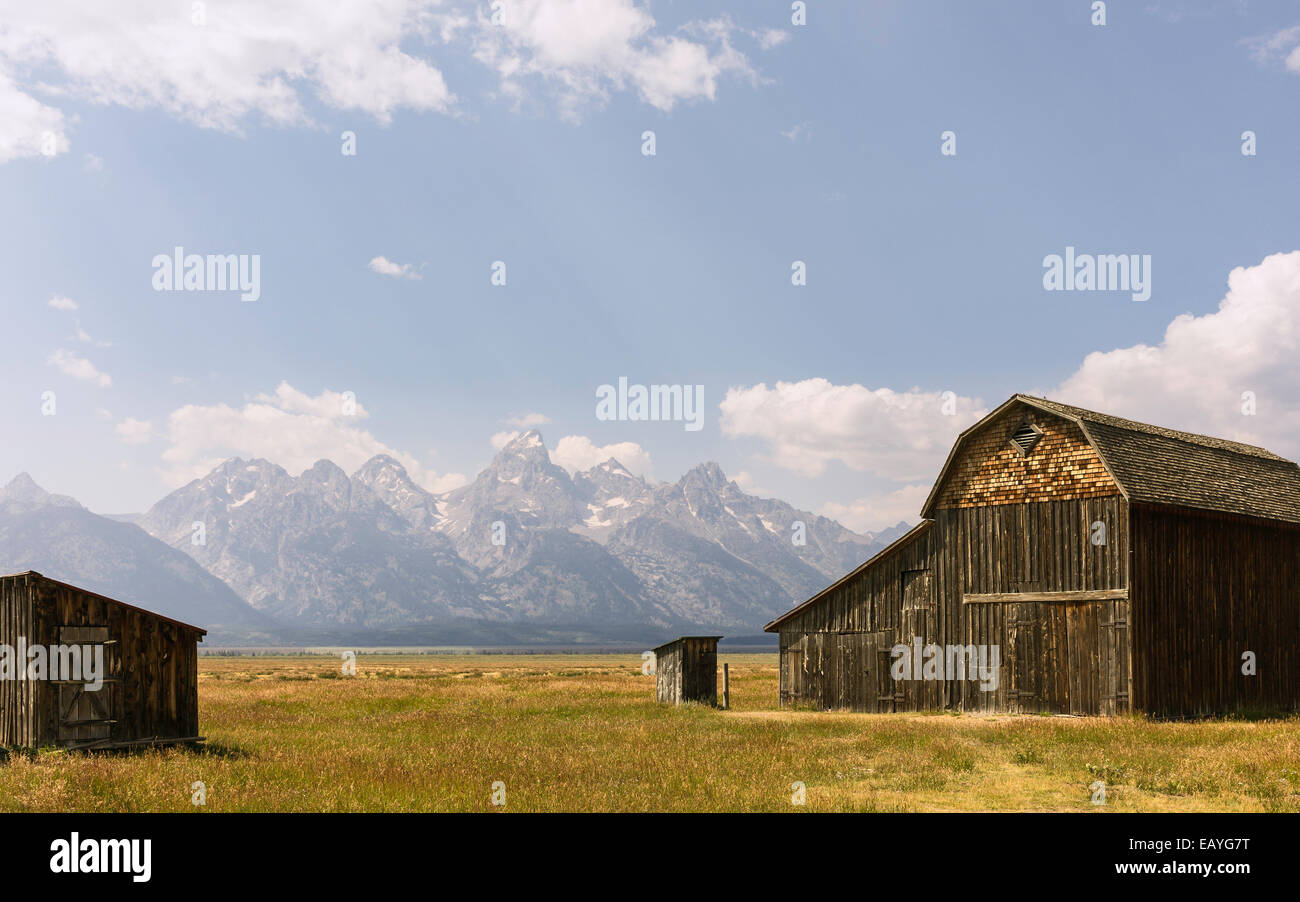 Derelict barns of early Mormon community set against the Grand Tetons on a bright sunny day, Mormon Row, Jackson, Stock Photo