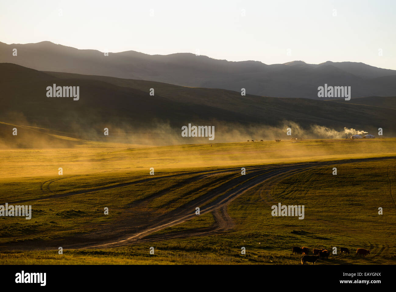 Gers on the steppe, Mongolia - Stock Image
