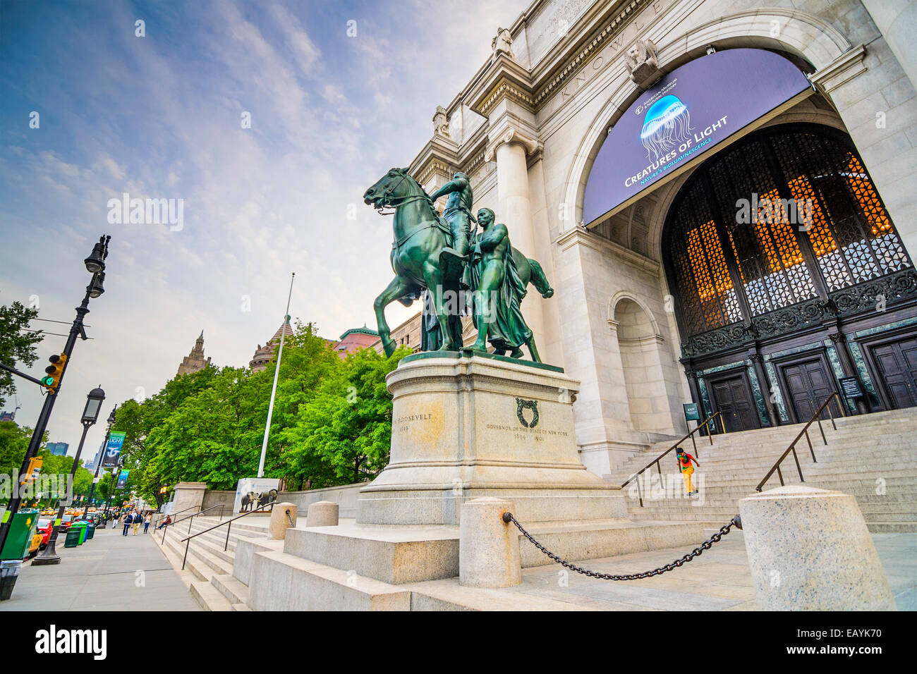 American Museum of Natural History in Manhattan. The museum collections contain over 32 million specimens. - Stock Image