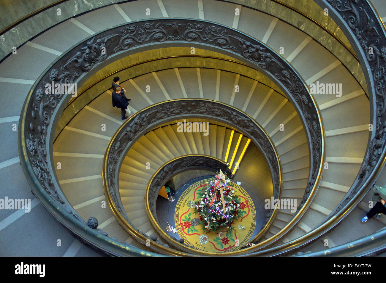 The Spiral Staircase In The Vatican Museum, With A Christmas Tree At The  Bottom.
