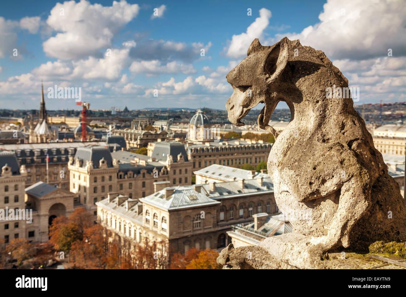 Paris aerial view with Chimera of Notre Dame de Paris - Stock Image