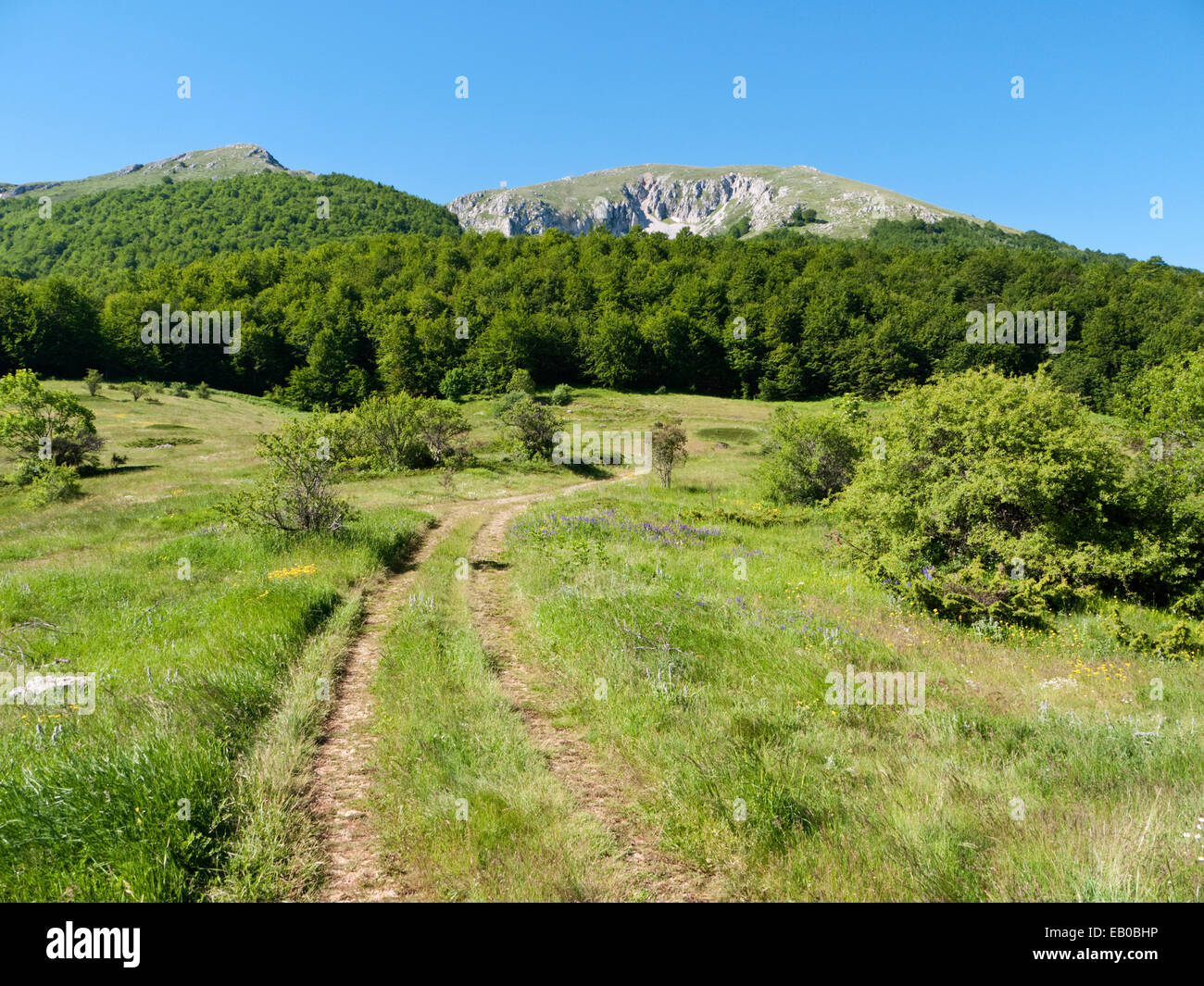 The mountain of Magaro, highest point of Galicica National Park, FYR Macedonia - Stock Image