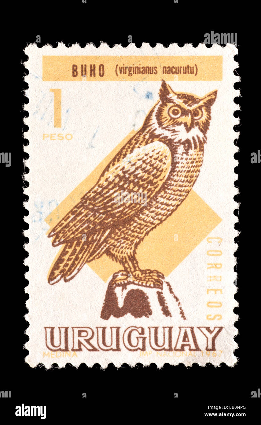 Postage Stamp From Uruguay Depicting South American Great Horned Owl Bubo Virginianus Nacurutu