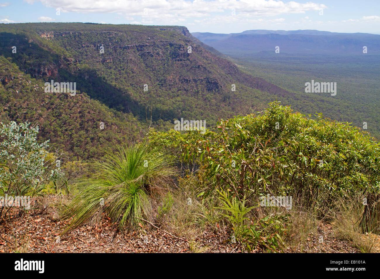 View across the escarpment of the Blackdown Tableland National Park - Stock Image
