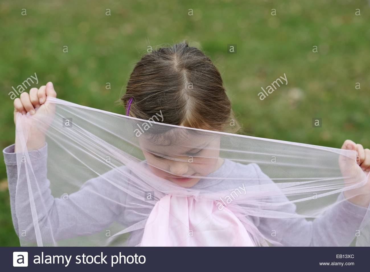 A little girl hiding behind pink tulle. Stock Photo
