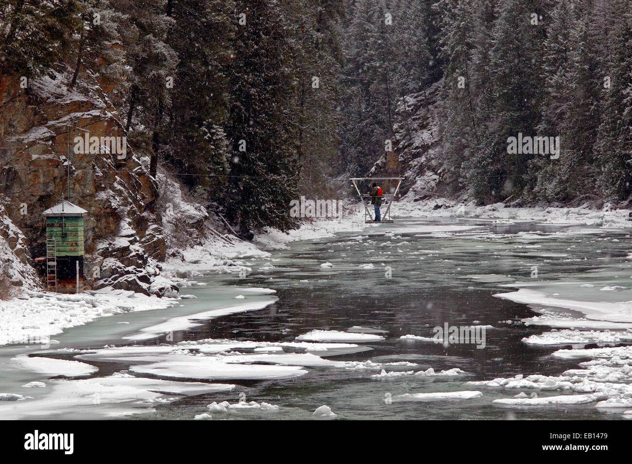 Checking a USGS stream gage on the Yaak River in winter. Kootenai River Valley, northwest Montana. - Stock Image