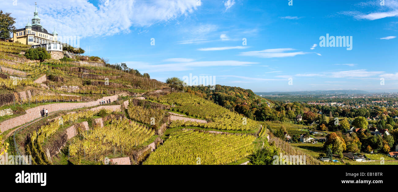 Panorama of the Radebeul Vineyards in Autumn, Elbe Valley, Saxony, Germany , with the Spitzhaus built in 1622. - Stock Image