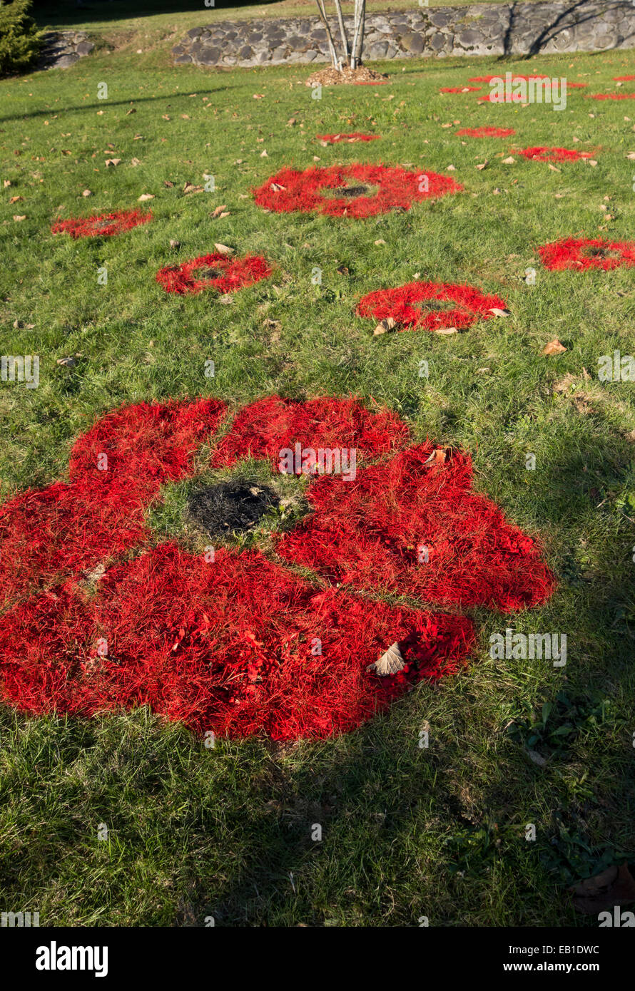 Red poppies painted on the grass as part of a Remembrance Day display.  In Coquitlam, BC, Canada 2014. - Stock Image