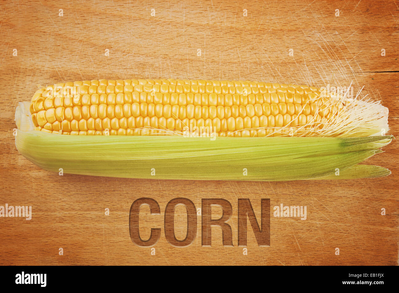 Beautiful fully developed Corn Maize Cob with golden seed on wooden background - Stock Image