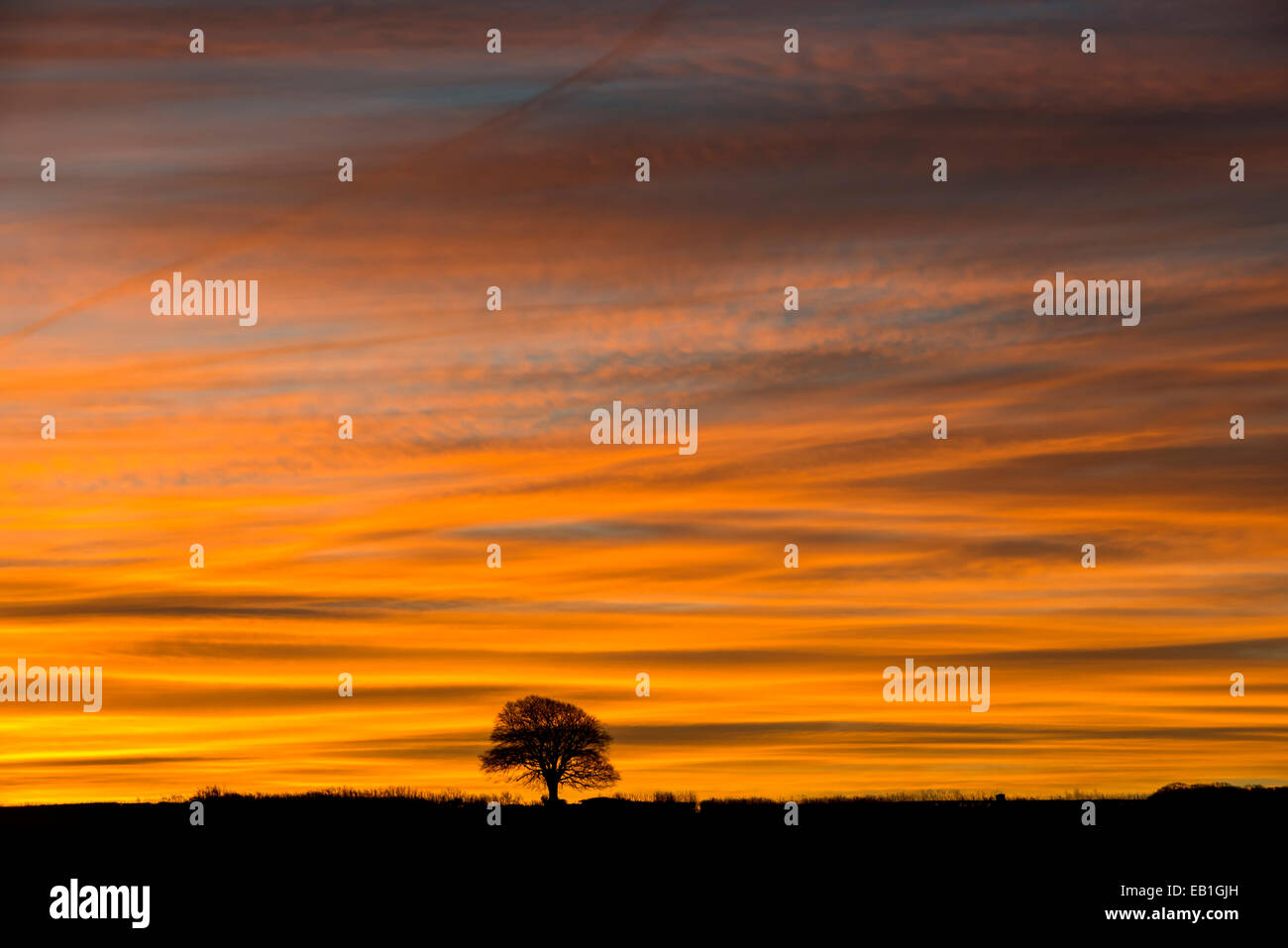 Magnificent orange pattern skies across Exmoor resembling an artist's canvas as temperatures reach below zero. - Stock Image