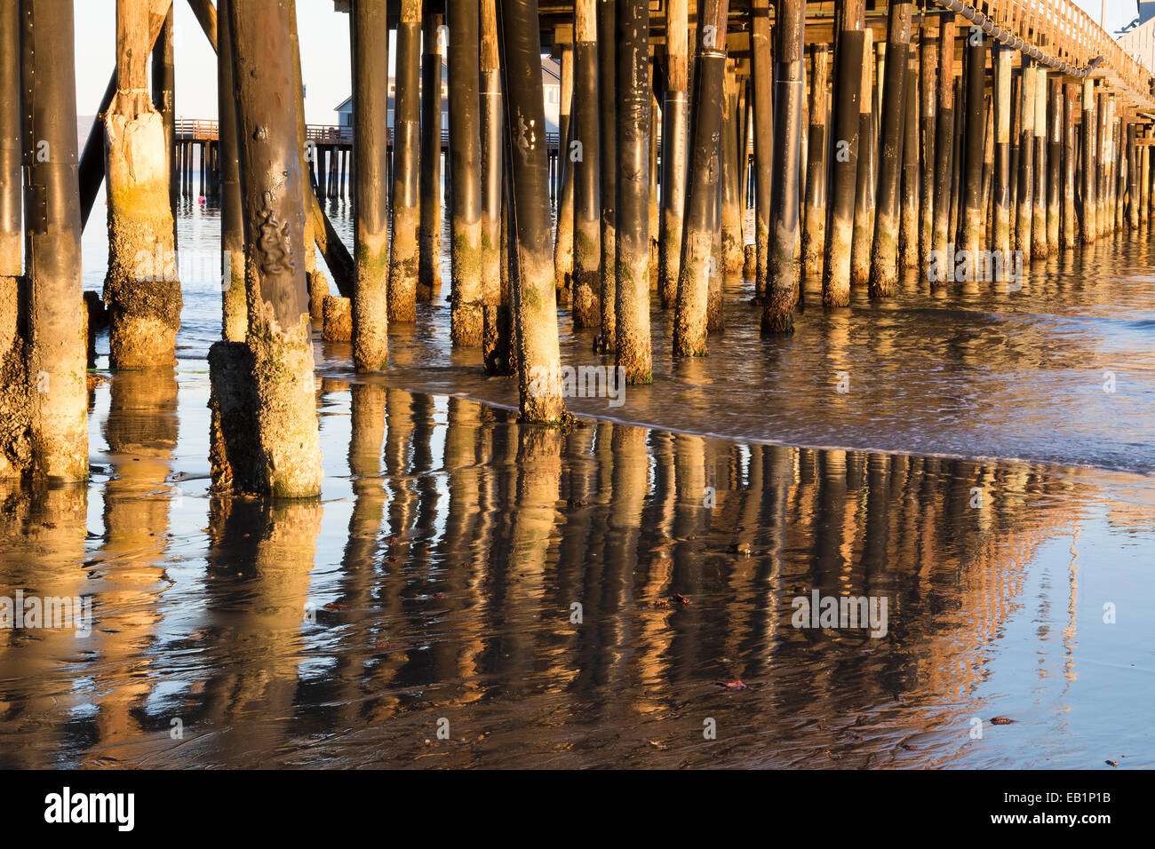 Low sunlight bounces off pier pilings while gentle surf rolls along the shoreline. - Stock Image