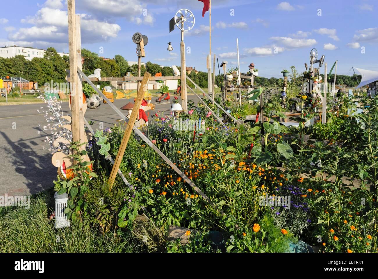 Community garden, Tempelhofer Freiheit, Berlin, Germany - Stock Image