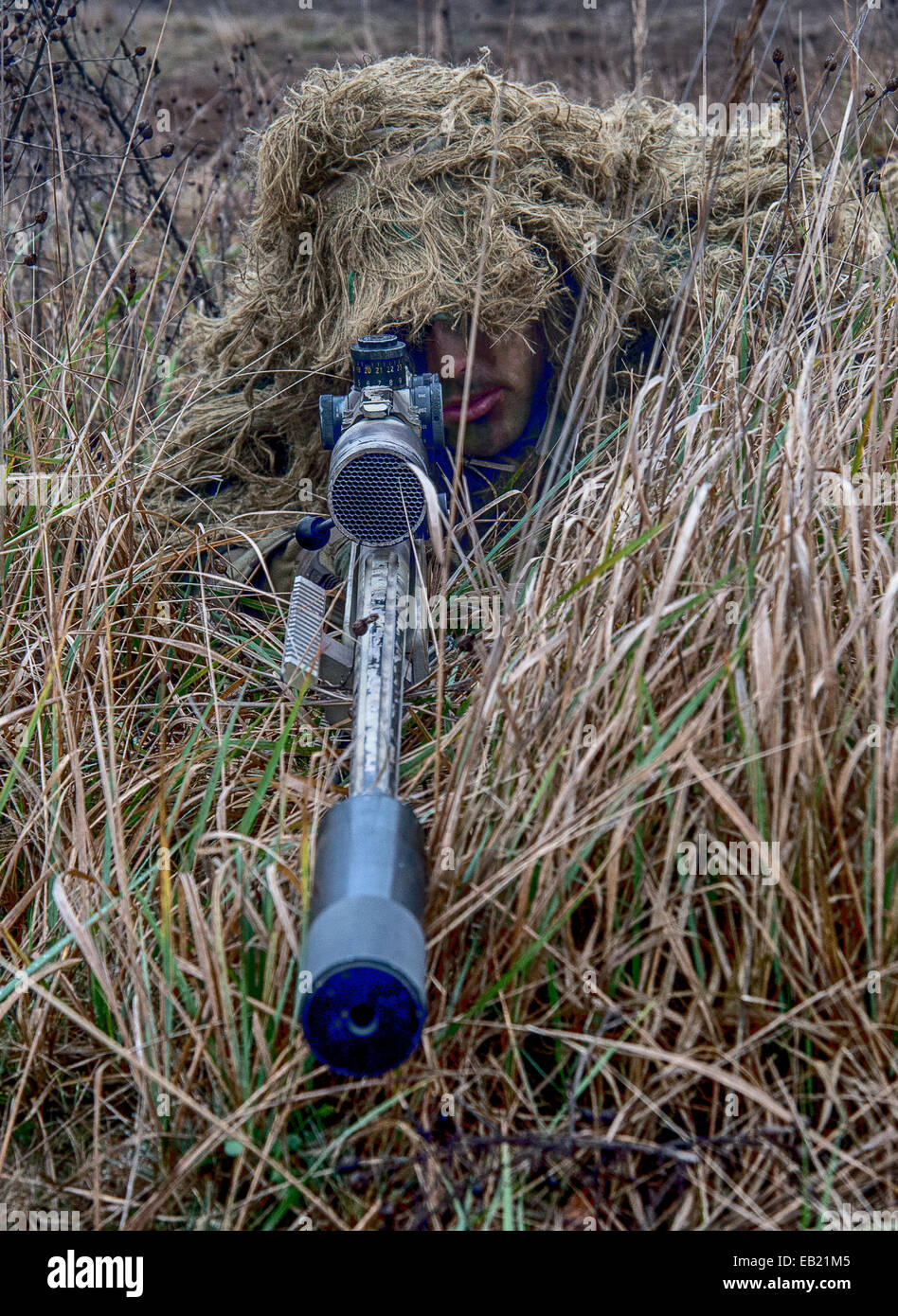 British sniper with his L115A3 long range sniper rifle on exercise in Poland nov 2014 - Stock Image