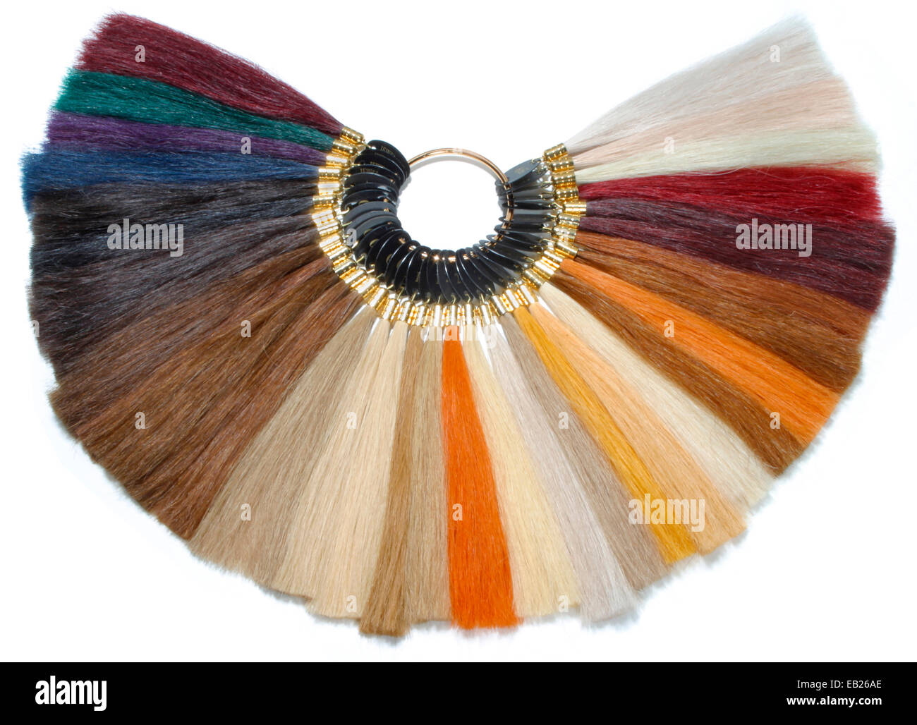 hair color choices wheel - Stock Image