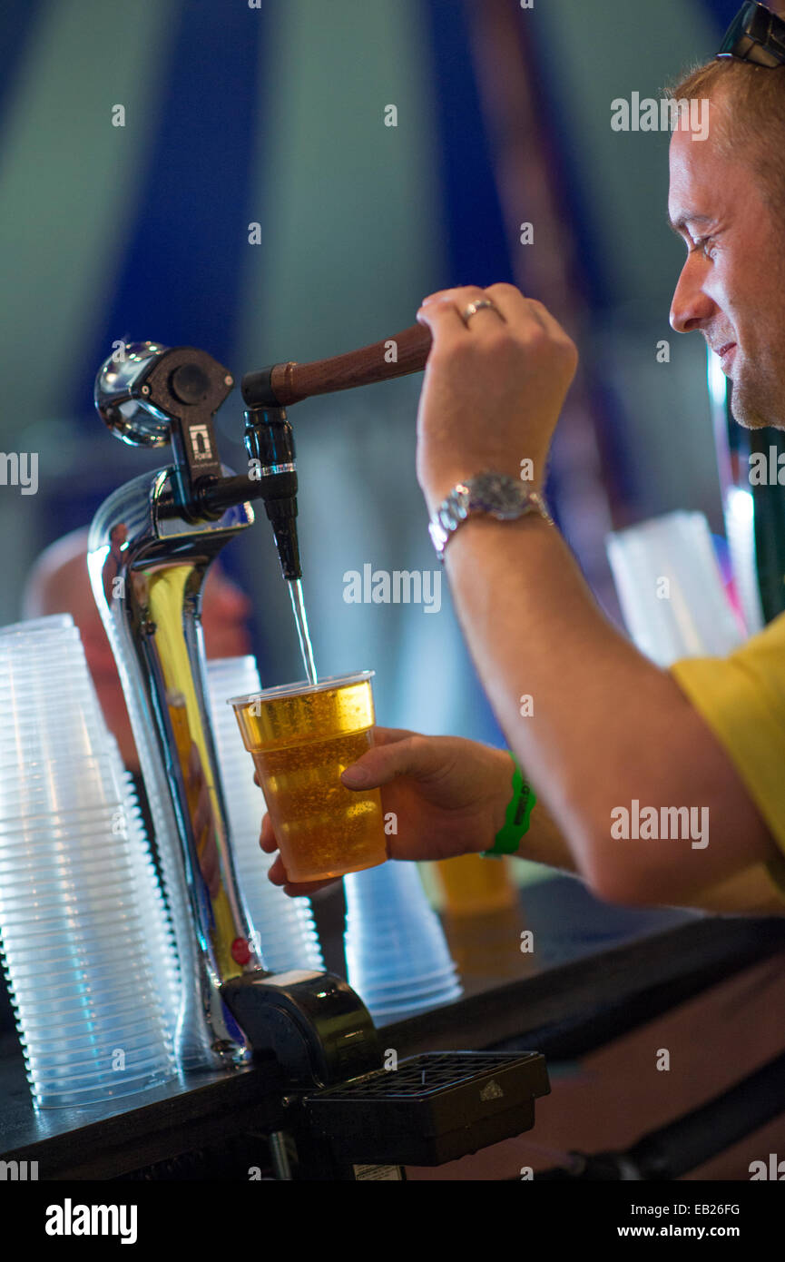 A man working pouring a pint in the beer tent at the Big Tribute music festival Aberystwyth UK August bank holiday - Stock Image