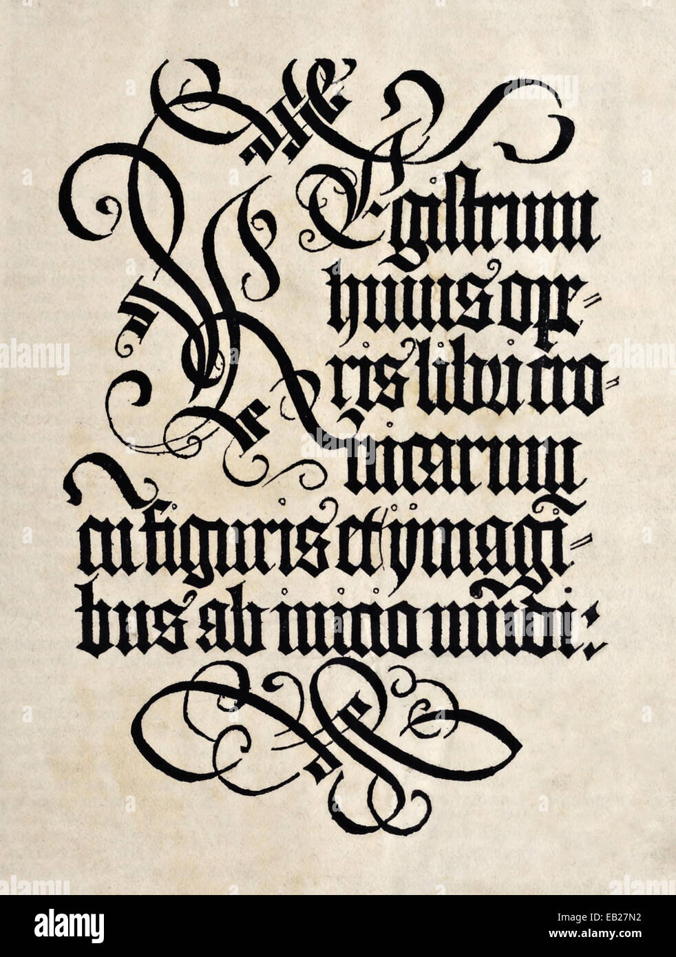Title page from 'Liber Chronicarum' by Hartmann Schedel (1440-1514). See description for more information. - Stock Image