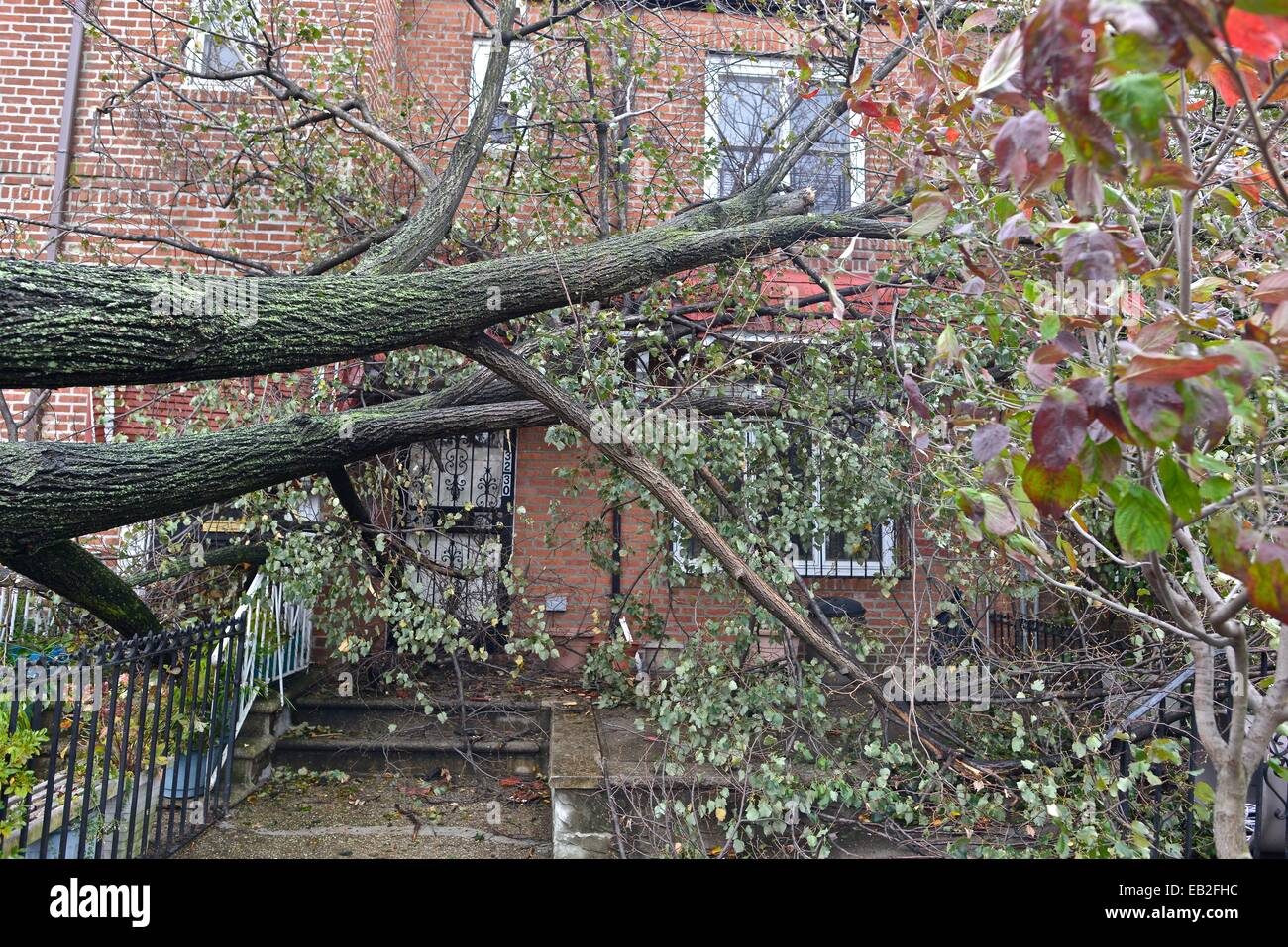 Aftermath of the tropical super storm Hurricane Sandy, in Queens, New York. - Stock Image